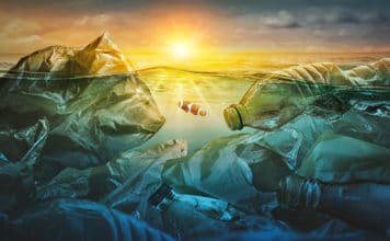 Ocean Plastic Pollution Recycling